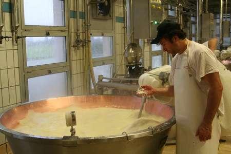 Экскурсия на производство: итальянский сыр с плесенью Горгон