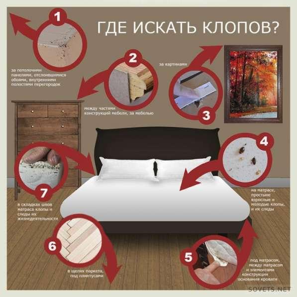 Уничтожить избавится вывести убить клопов блох муравьи тарак в Томске