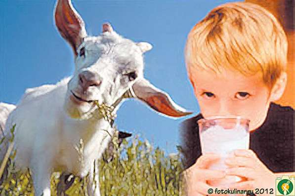 Молоко коровье от 100 руб