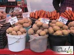 Оптовая поставка картофеля из Мордовии по России и СНГ