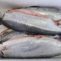 Рыба любая по очень низкой цене, в Москве
