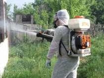 Уничтожение тараканов, в г.Симферополь