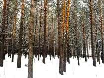 Участки возле леса, в Красноярске