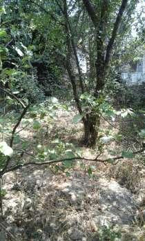Земельный участок, в г.Ялта