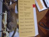 """Энциклопедическое издание """"В мире дикой природы"""", в Санкт-Петербурге"""