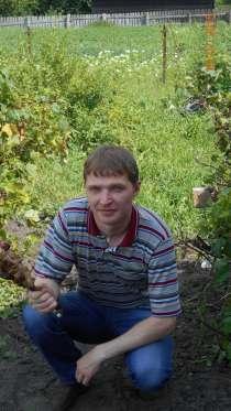 Дмитрий, 34 года, хочет познакомиться, в Санкт-Петербурге