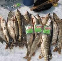Активатор клева рыбы, в Красноярске