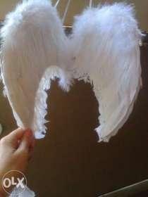 Крила ангела прокат, в г.Львов