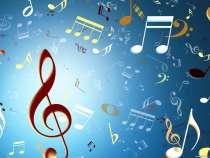 Музыка и ведущий на свадьбу, в г.Брест