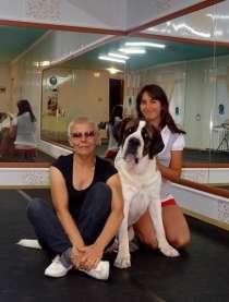 Дрессировка собак, корректировка поведения., в Новосибирске