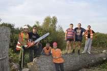 Спилим аварийные деревья любой сложности, в Белгороде