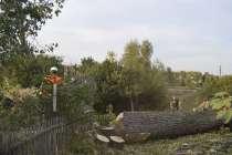 Валка и удаление деревьев любой сложности, в Белгороде
