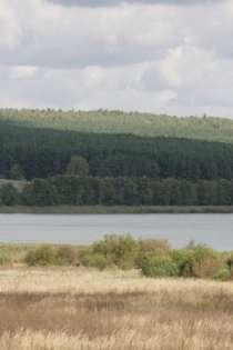 Продаю земельный участок 17 га, ИЖС, в Нижнем Новгороде