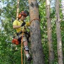 Спиливание деревьев, веток., в Москве