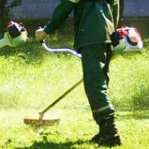 Выкосим траву, в Бийске