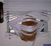 Жалюзи, рулонные шторы, в г.Губкин