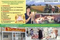 реклама, в Иванове
