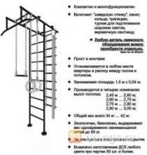 Продам спортивный комплекс Алеша, в Новосибирске