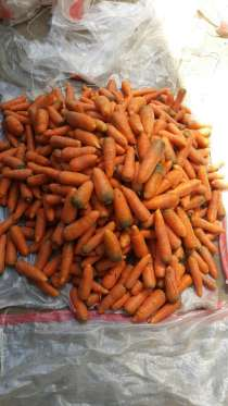 Морковь  без  посредников, в Воронеже