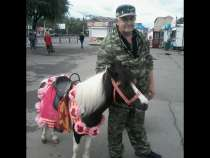 услуги сварщика сантехника-отделочника, в Красноярске