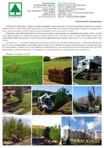 саженцы, рулонные газоны, деревья крупномеры, в Барнауле