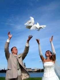 Свадебный салон, в Мытищи