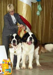 Инструктор по вязкам собак., в Новосибирске