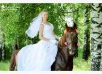 Фотосессии с лошадьми и пони, в Нижнем Новгороде