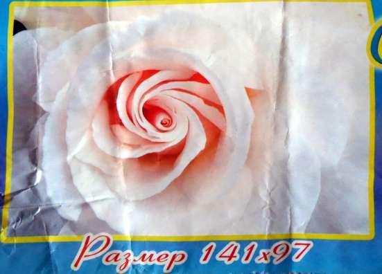 Фото-обои Роза Невеста 141 см на 97 см