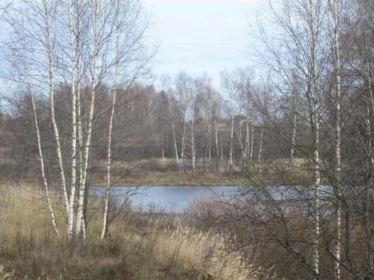 Продается земельный участок 8 соток в СНТ«Уваровка» в Можайском районе, 130 км от МКАД по Минскому шоссе Фото 2