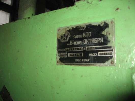 Smtd. Листогиб -усл.220т. на 5-6м в Санкт-Петербурге Фото 1