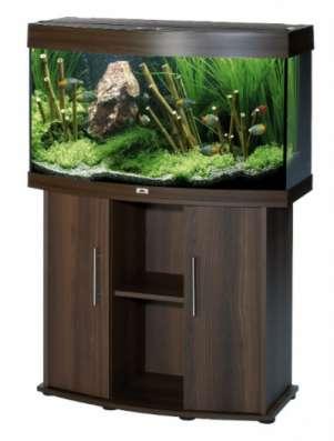 Аквариум,грунт,светильник,песчаник,рыбы