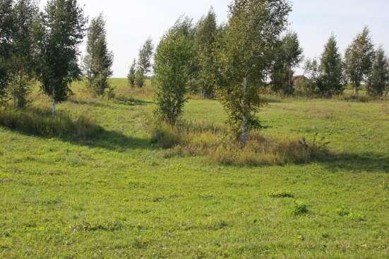 Продам Земельный участок в Новосибирске Фото 2