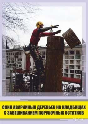 Удаление деревьев любой сложности в Воронеже Фото 5