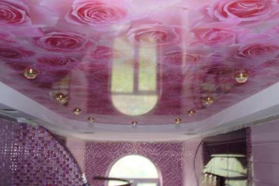 Художественные натяжные потолки. Экосольвентная печать