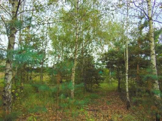 Звенигород. Участок 8 соток. Газ. Речка и лес.