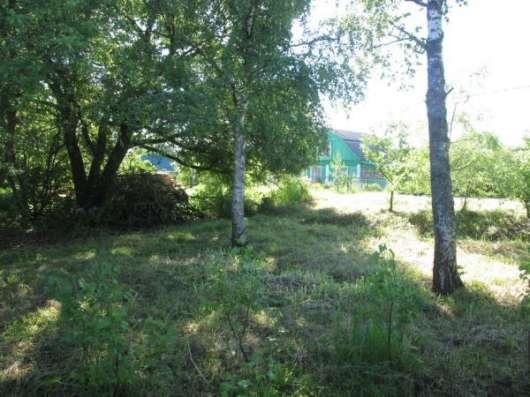 Продается земельный участок 30 соток в д. Макарово, Можайский р-он, 100 км от МКАД по Минскому шоссе. Фото 1