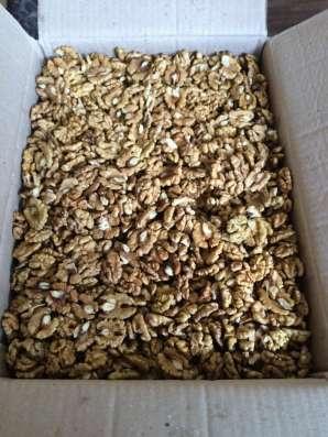 Грецкий орех в Краснодаре Фото 1