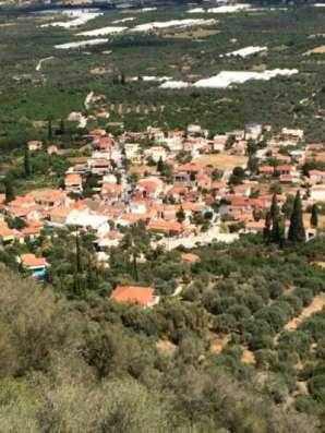 Домашнее Оливковое масло из Греции