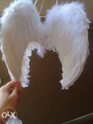 Крила ангела прокат