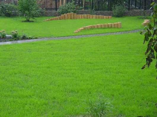 Низкорослые газоны