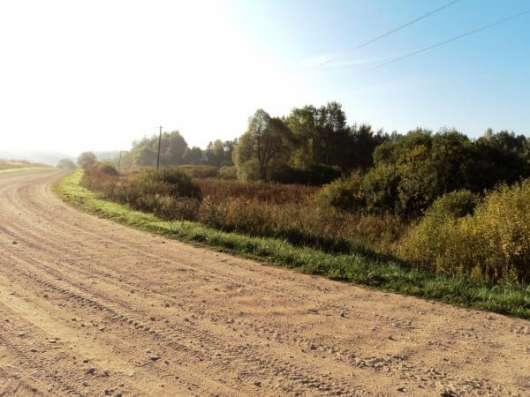 Участок 3Га, д. Ерышово, Можайский р-н. Фото 2