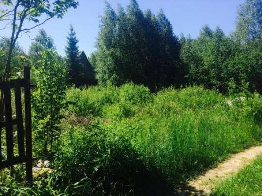 """Продается земельный участок 6 соток в СНТ """"Поиск"""", вблизи дер. Бели, Можайский р-он, 119 км от МКАД по Минскому шоссе."""