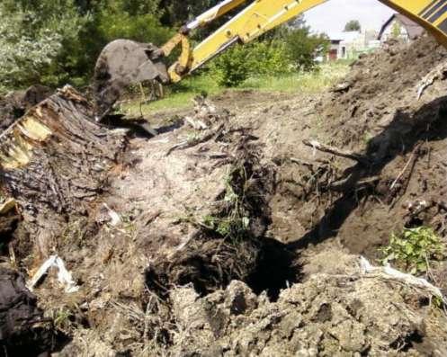 Спил, корчевание деревьев в г. Троицк Фото 1