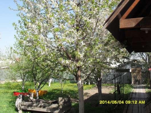 Продам дом в Каменке, Айболит. Дом уютный, с продуманной пла в г. Талдыкорган Фото 1