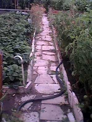 Продам дачу в Дачном микрорайоне города Павлодара Фото 5