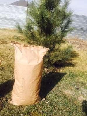Продам Уголь древесный березовый - 9 кг в г. Алматы Фото 5