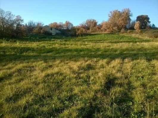 Продам срочно свой тройной участок земли в 9,5 гектар в г. Molise Фото 1