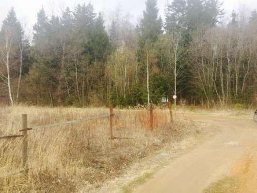 Продается земельный участок 7 соток в СНТ «Дружба» (вблизи дер. Аникино) Можайский р-он, 86 км от МКАД по Минскому шоссе. Фото 3