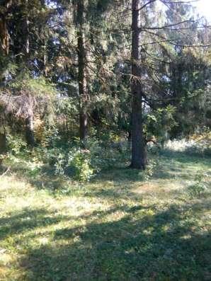 30 соток в лесу новая Москва д.Сатино-Русское